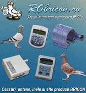 Robricon