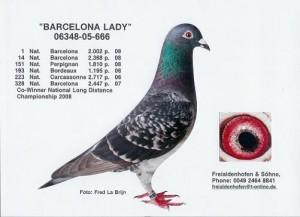 Barcelona Lady