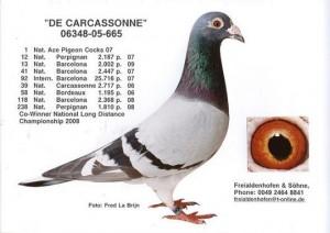 De Carcassonne