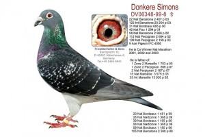Donkere Simons