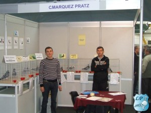 C. Marquez Pratz