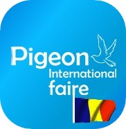 Pigeon Int. Fair