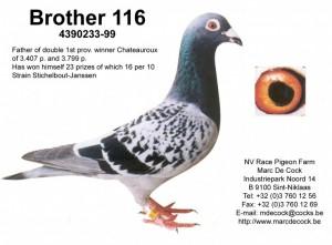 Superbreeder 233