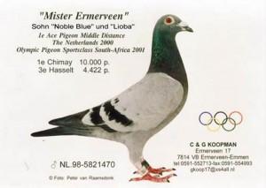 Mister Ermerveen