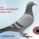 Nl 05-5529998