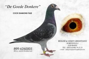 DE Goede Donkere