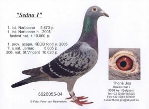Sedna I